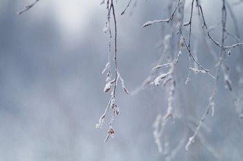 zima, hladnoća
