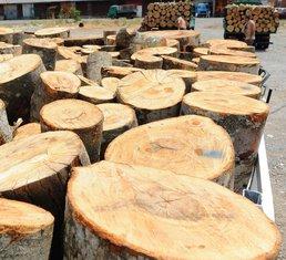 drva za grijanje