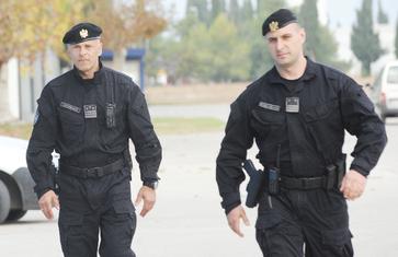 Radosav Lješković, Mirko Banović