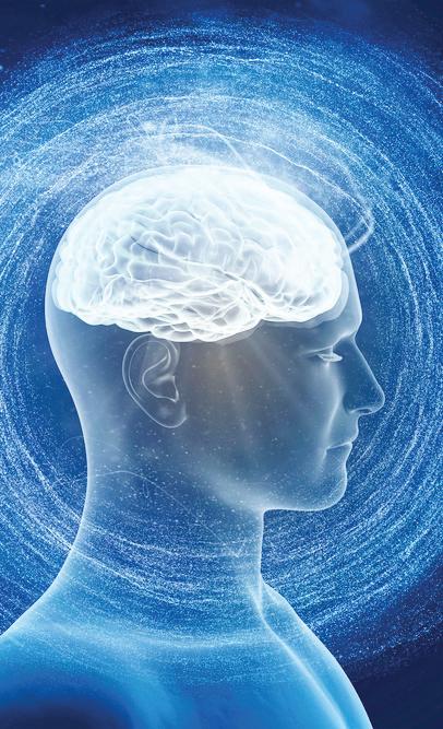 Mozak, glava, zdravlje