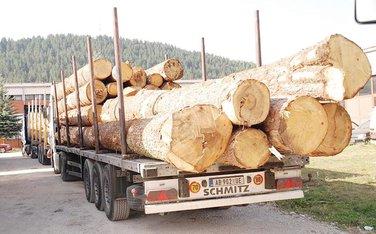 Drva, drvna industrija