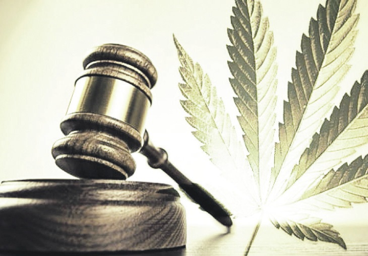 Marihuana, presuda