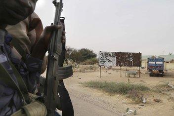 Čadski vojnik, Nigerija