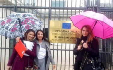 Ćalasan, Pavićević i Kurgaš ispred sjedišta Delegacije EU