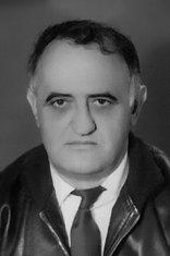 Dimitrije Vujović