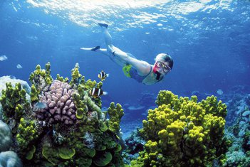 Veliki koralni greben