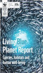 Izvještaj o stanju mora i okeana
