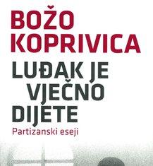Božo Koprivica, knjiga (Novine)