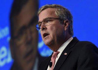 Džeb Buš