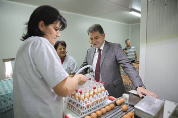 Petar Ivanović, Fabrika stočne hrane Spuž