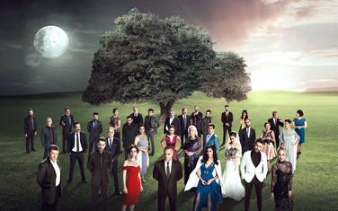 Serija Velika porodica