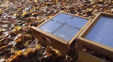 sauna za pčele