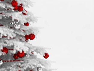 Božić, jelka