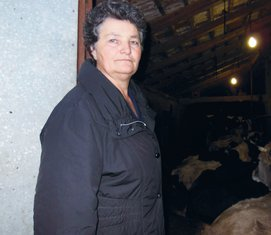 Milica Radović