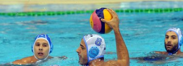Toni Petrović