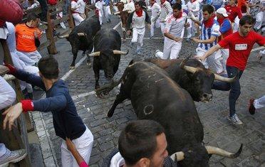 Pamplona, bikovi