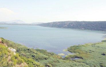 Šasko jezero, Šasko polje