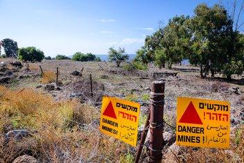 minsko polje