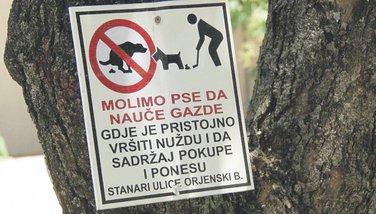 psi plakat Herceg Novi