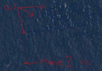 Kortni Lav našla malezijski avion
