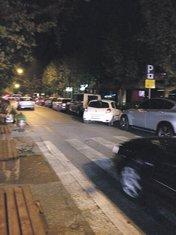 Njegoševa ulica, Vesna Bigović