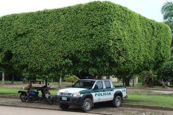 Kolumbija policija, Kolumbijska policija