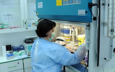 Virus gripa tipa A potvrđen je laboratorijski do sada kod 336 osoba.