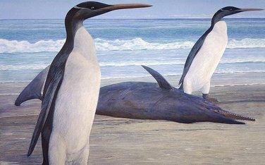 džinovski pingvin