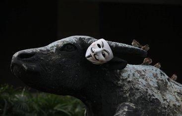 Protesti, Maska, Okupirajmo Vol Strit