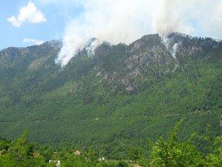 Požar Mojkovac, Đurđevića Tara