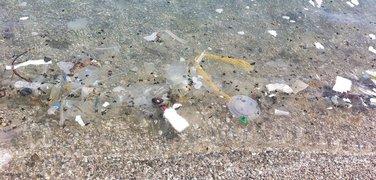 smeće plaža Jaz