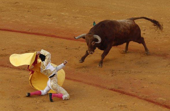 korida, španija