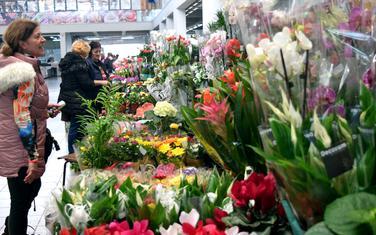 Nekad je cvijeće bilo simboličan dar učiteljici (Ilustracija)