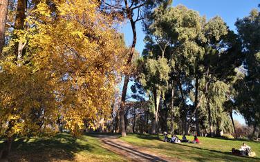 Park u Madridu