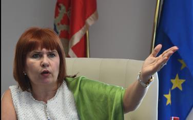 Državni organi ne snose posljedice za kršenje Konvencije:Pavličić