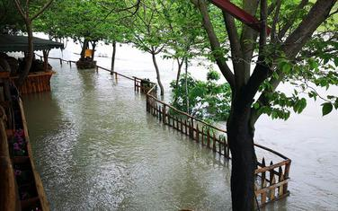 Obilne padavine