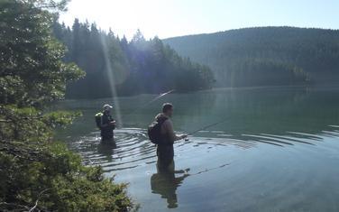 Dubine kriju kapitalce: Ribolovci u akciji