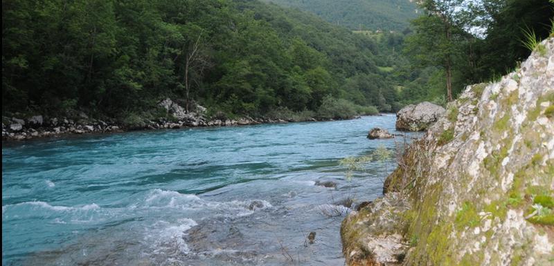 Rijeka Tara (Ilustracija)