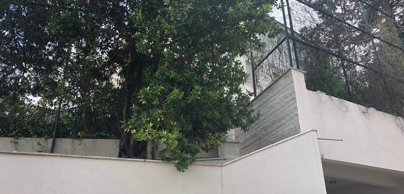 Visoka ograda oko vile