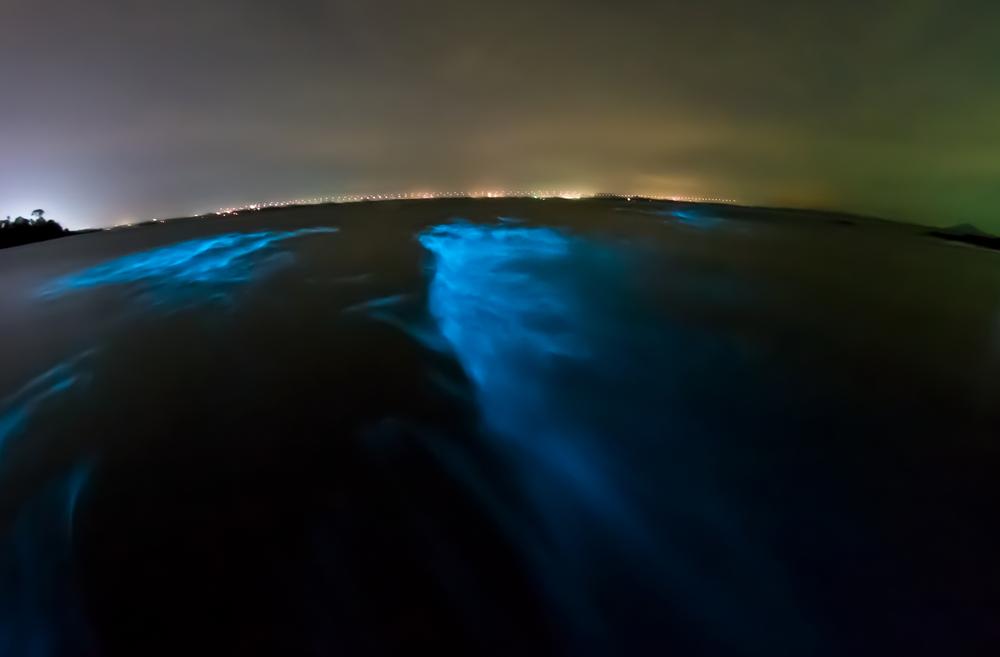 Bioluminescent Beach, Maldivi (foto: Shutterstock)