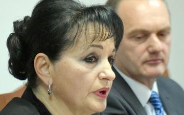 Medenica i Savić
