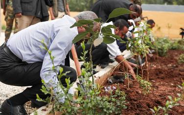 Pojedine državne službe u Etiopiji su zatvorene, kako bi službenici mogli da učestvuju u sađenju
