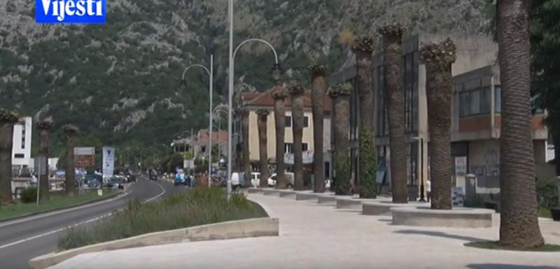 Upadljivo propadanje palmi