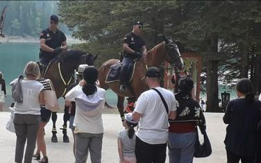 Konjička policija