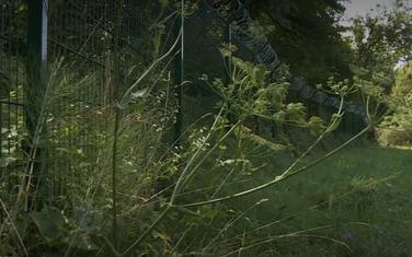 Žica postavljena na granici s Hrvatskom
