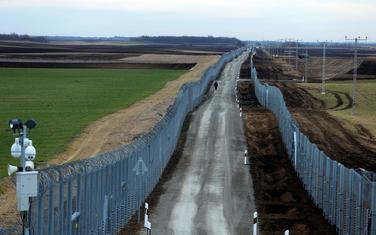 Bodljikava žica na granici Mađarske sa Srbijom