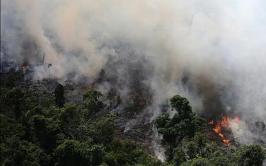 Jedan od požara u prašumama Amazona
