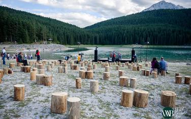Na obali Crnog jezera postavljeno je 150 panjeva