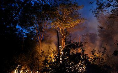 Većinu požara izazivaju poljoprivrednici