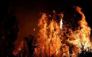 Drastične posljedice požara